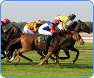 Horse racing - betting on Smarkets betting exchange